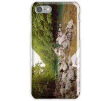 Beautiful river  iPhone Case/Skin