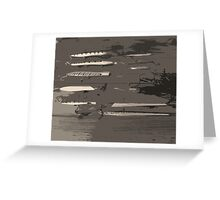 Grey lures Greeting Card