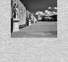 Great Parterre, Gardens of Schönbrunn, Vienna Unisex T-Shirt