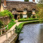 The Thatched Cottage by Tom Gomez