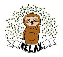 Relax like a sloth! Photographic Print