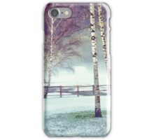 Two birches iPhone Case/Skin
