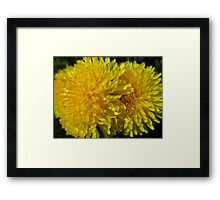 Off With Their Heads  Framed Print