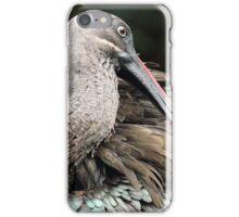 Hadada Ibis iPhone Case/Skin