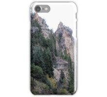 Cedar Mountain iPhone Case/Skin
