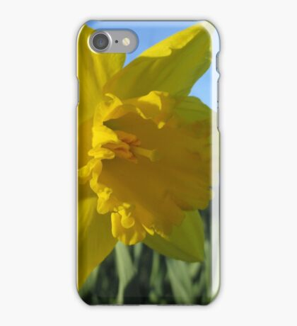 Now That's A Daffodil iPhone Case/Skin