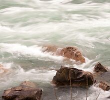 River Study 1 by NEKROS