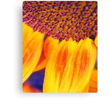 Sunflower III - Ipad case by Silvia Ganora Canvas Print