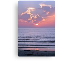 Sunset over the ocean watched by a bird on the beach Canvas Print