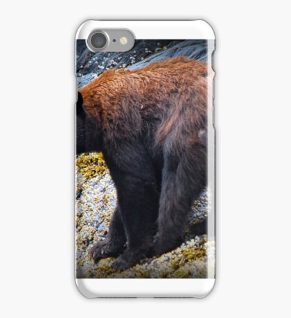 Black Bear at low tide iPhone Case/Skin
