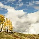 Storm on the fall horizon by Linda Sparks