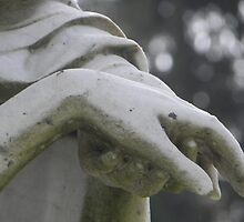 Hands by hbphotography