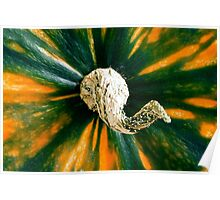 Colorful Gourd - Fall themes Poster