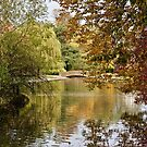 Rowntrees Park by John (Mike)  Dobson