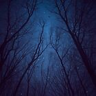 I Have Loved the Stars too Fondly (Night Trees Silhouette Abstract 2) by soaringanchor