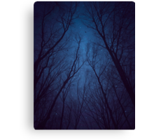 I Have Loved the Stars too Fondly (Night Trees Silhouette Abstract 2) Canvas Print