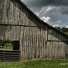 """FARMER'S HANGOUT""... prints and products by © Bob Hall"