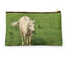 """Horses with Attitude no. 8 """"I'm Soooo Good Lookin' ... Can't Help Myself!"""" Studio Pouch"""