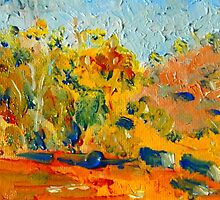 The Rocky Countryside at Sutton Grange VIC Australia by Margaret Morgan (Watkins)