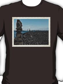 Aug 10 2014  Stone Figures T-Shirt