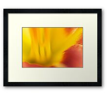 Other Worlds - 2014 Framed Print