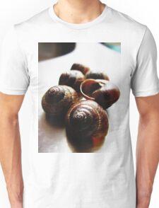 Nobody Home Unisex T-Shirt