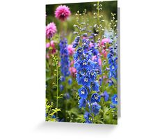 Colorful Summer Flowers Greeting Card