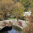 Autumn Colors, Central Park, Bridge, Skating Rink, New York City by lenspiro