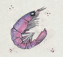 """""""S"""" is for Shrimp by inkmaid"""