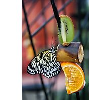 good buffet Photographic Print