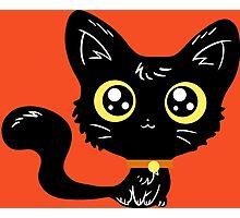Adorable Black Cat Photographic Print