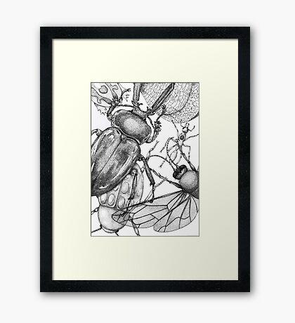 Bug party  Framed Print