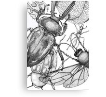 Bug party  Canvas Print