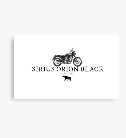 Sirius Orion Black Canvas Print