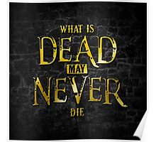 What Is Dead May Never Die: Ironborn Poster