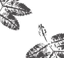 Leaf prints Sticker