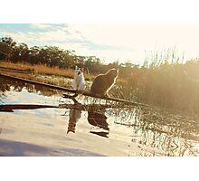 Planking Photographic Print