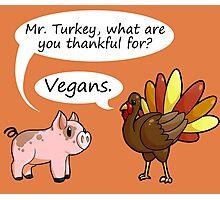 Even Turkeys are Thankful Photographic Print