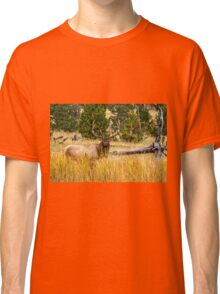 LOOKING OUT Classic T-Shirt