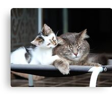 Little Brother, Big Brother Canvas Print