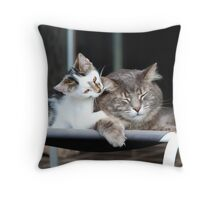 Little Brother, Big Brother Throw Pillow