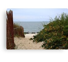 Fence Beside the Beach Path Canvas Print