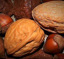 Oh nuts! by ♥⊱ B. Randi Bailey