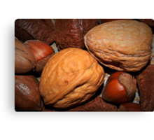 Oh nuts! Canvas Print