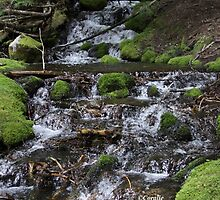 Falling Cascades of the Cascade Mountains Oregon by mrsroadrunner