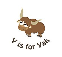 Y is for Yak Photographic Print