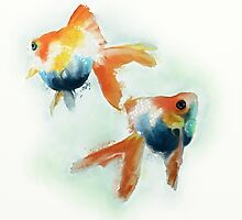 Goldfish by Catherine Gabriel