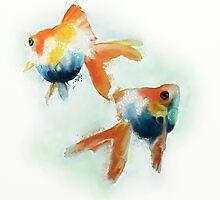 Goldfish by Cat Gabriel