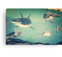 Beautiful Ocean Underwater Scene With Sharks And Sea Turtle  Canvas Print