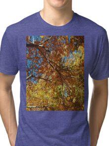 Abstract Garden Tri-blend T-Shirt